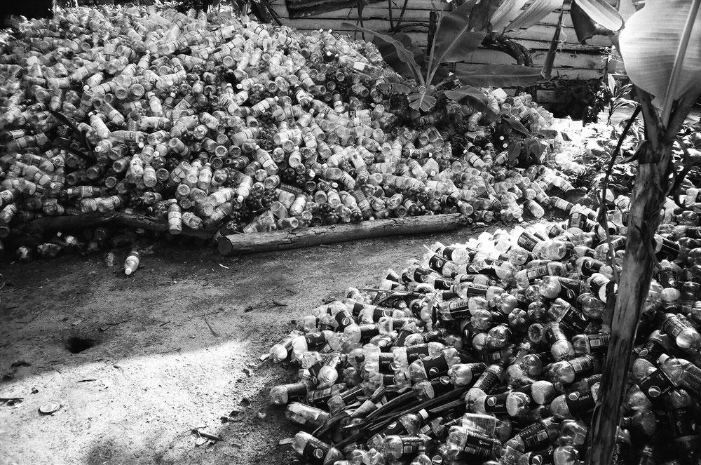 jamaica15.jpg