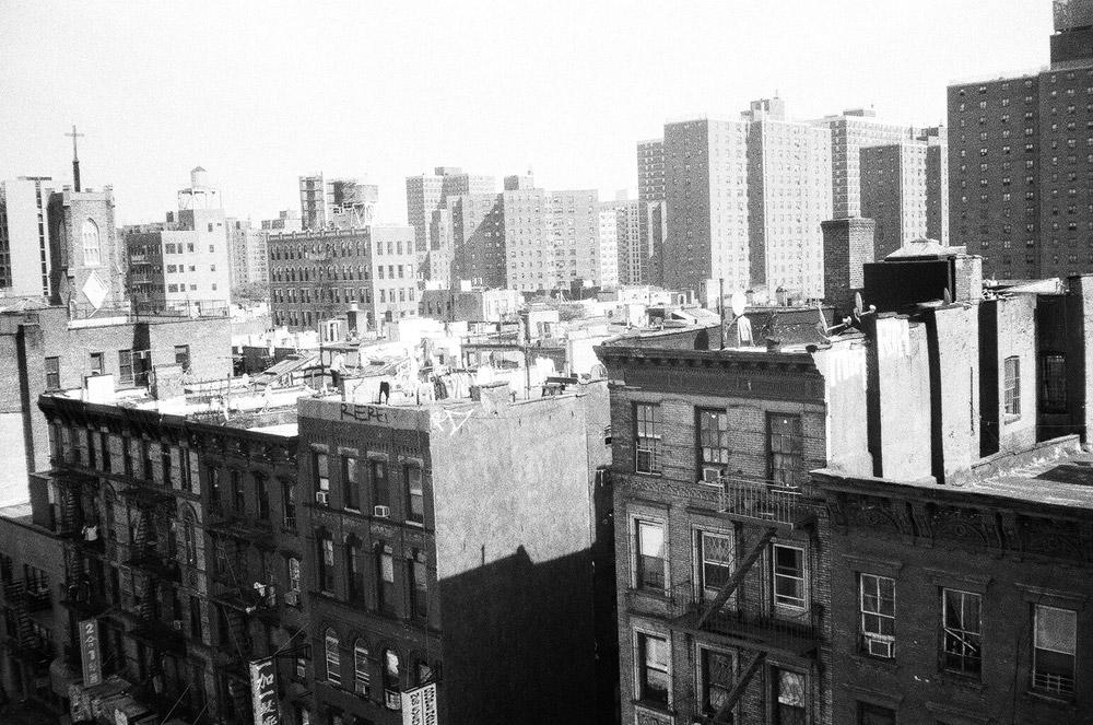roofies3.jpg