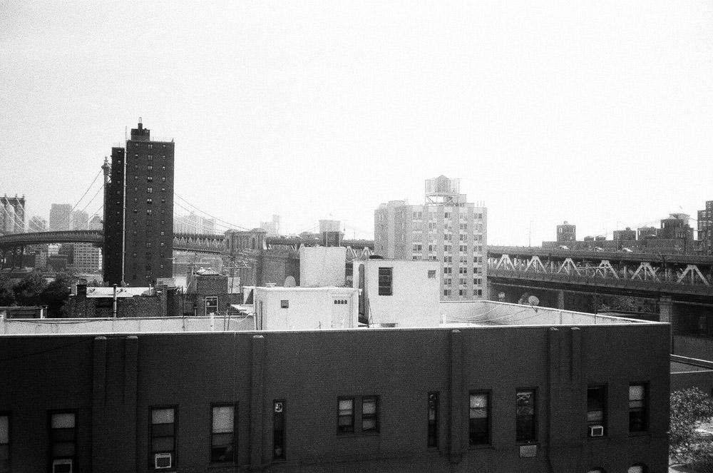 roofies4.jpg