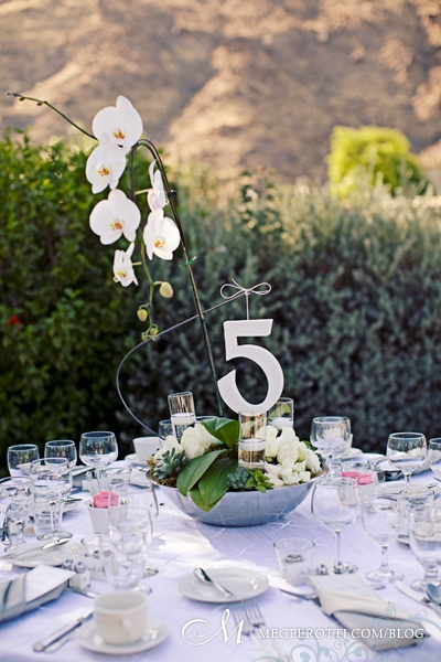 0061ChrisCarly_Wedding_PalmSprings_OrbitIn