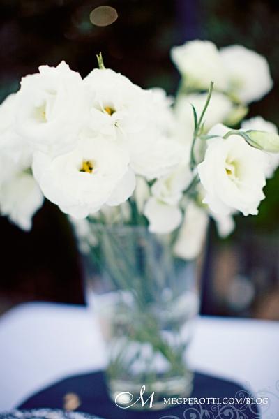 033Malibu Wedding Rancho del Cielo Meg Perotti