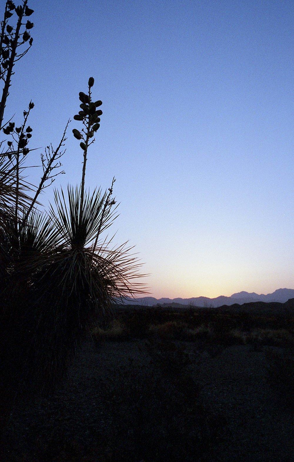 Desert132.jpeg