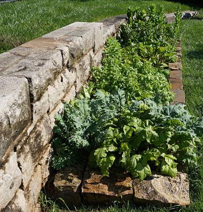 garden_opt.jpg