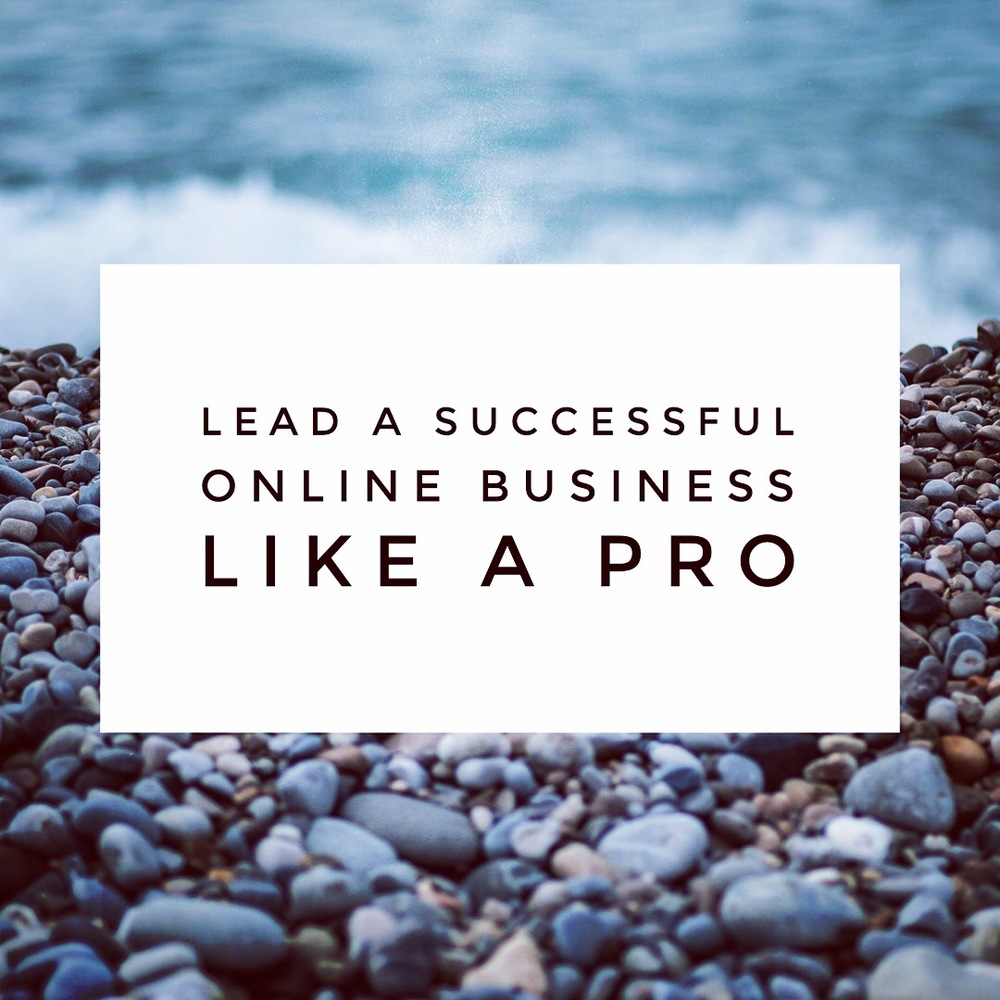 Lead a Successful Online Business Like a Pro