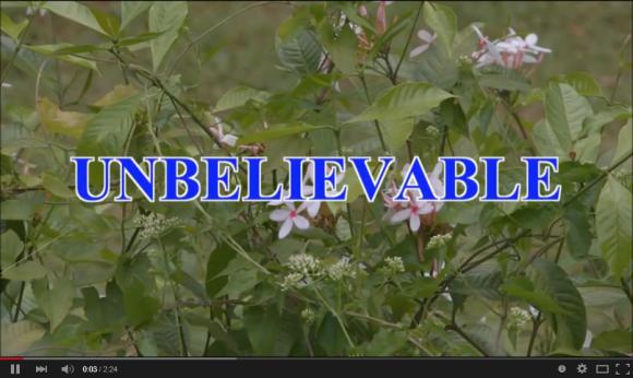 unbelievable-01
