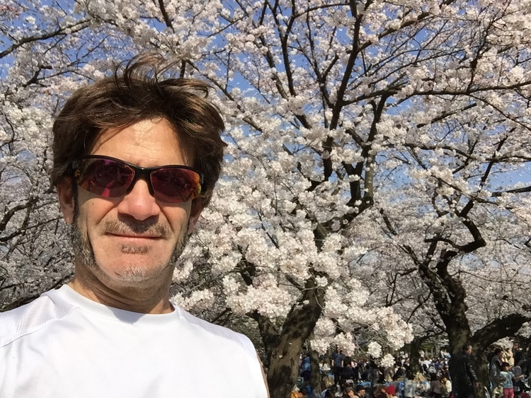 Our fearless leader Stu Levy loves going to Hanami when he can.