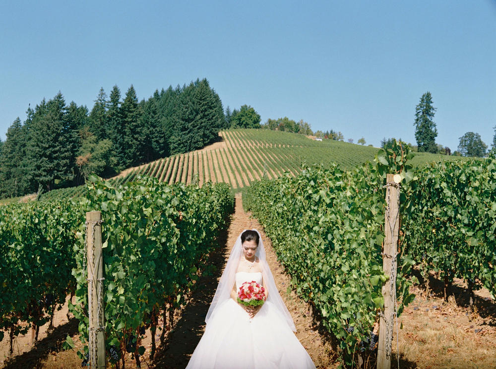 038+Saffron+Fields+Oregon+Fine+Art+Wedding+Photographer+Outlive+Creative.jpg