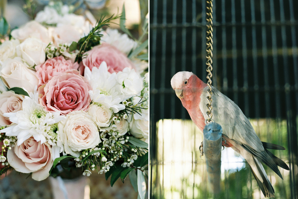 058johnna&jake+wine&roses+california+fineart+film+images+wedding+photography+videography.jpg