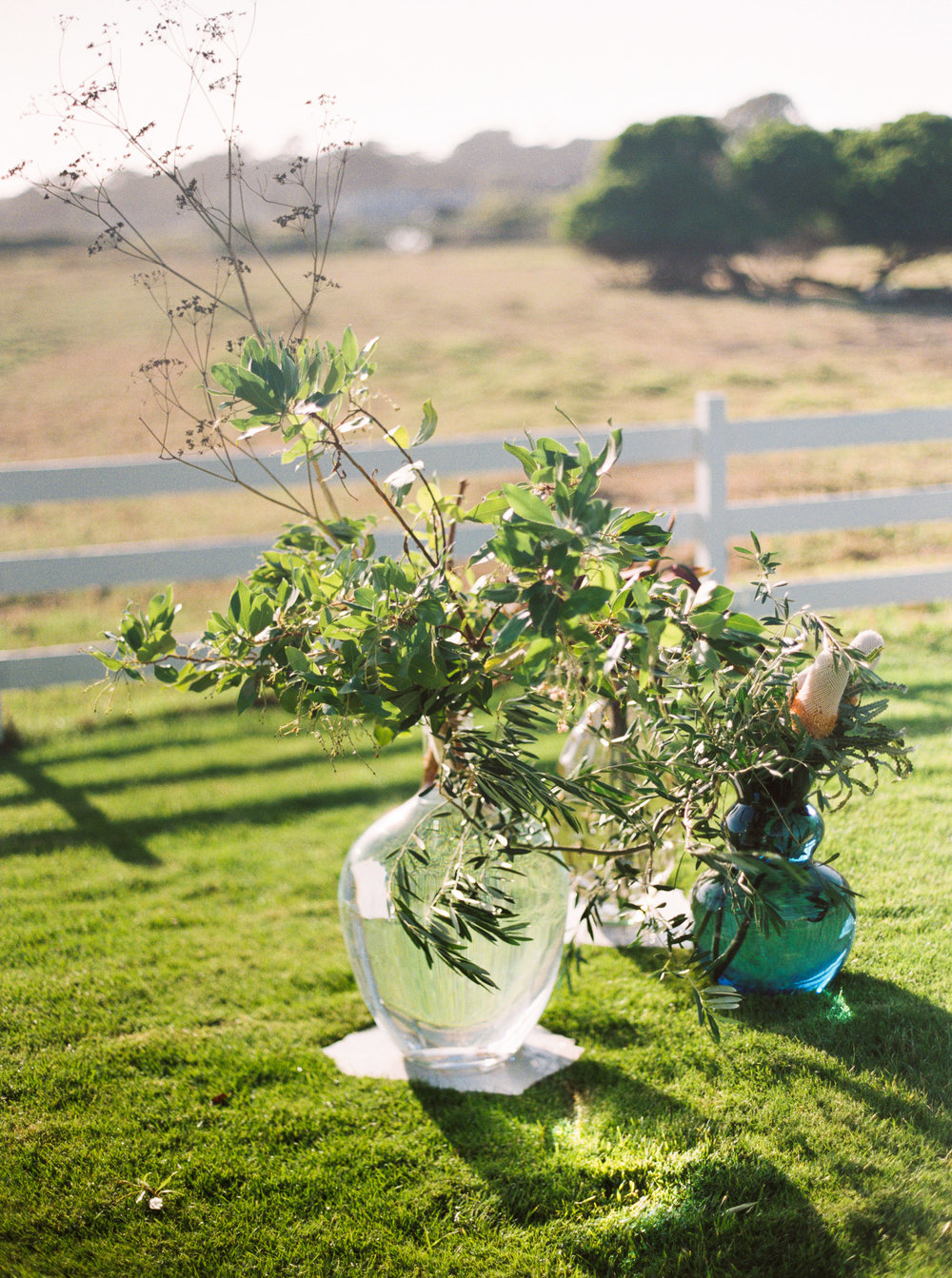 038carmel_california_destination_wedding_photography_wedding_videography_mission_ranch.jpg