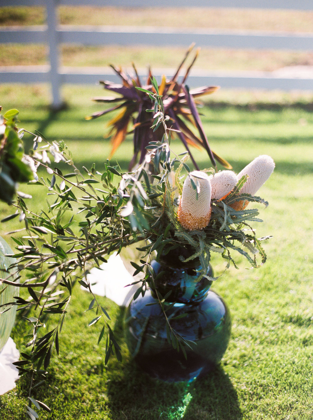 041carmel_california_destination_wedding_photography_wedding_videography_mission_ranch.jpg