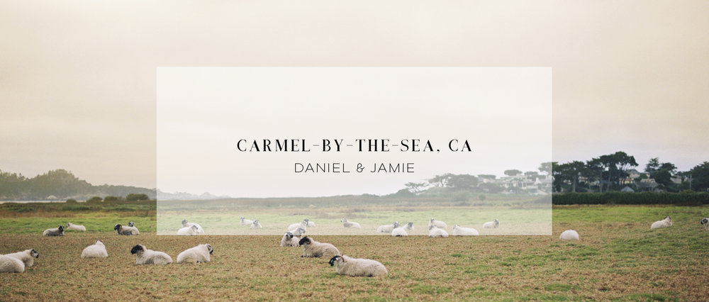 CARMEL BY THE SEA WEDDING VIDEOGRAPHER