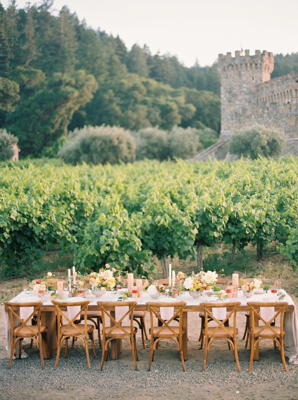 064napa_wedding_photographer_and_videographer_destination_and_elopement_photography.jpg