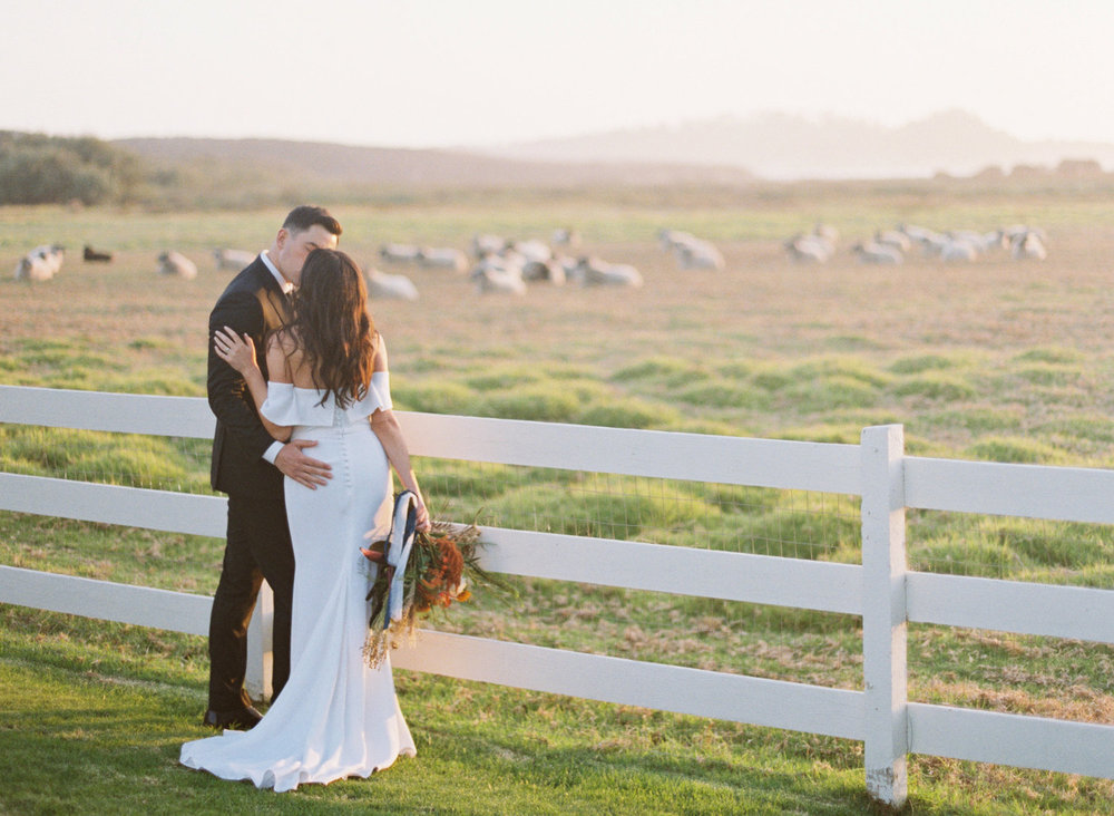 107carmel_california_destination_wedding_photography_wedding_videography_mission_ranch.jpg