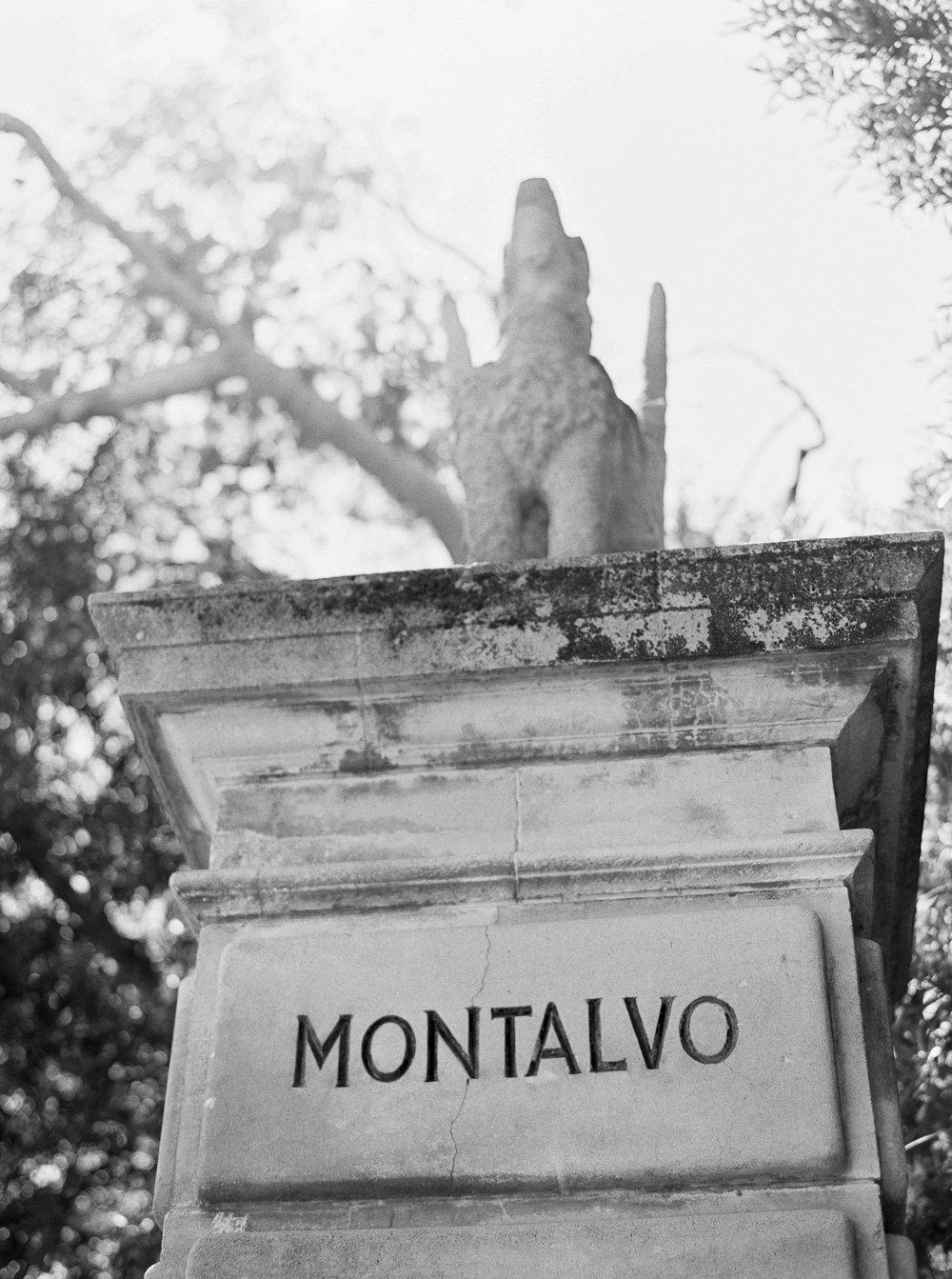 Villa_Montalvo_Wedding_Photographer_Videographer_San_Francisco061.jpg