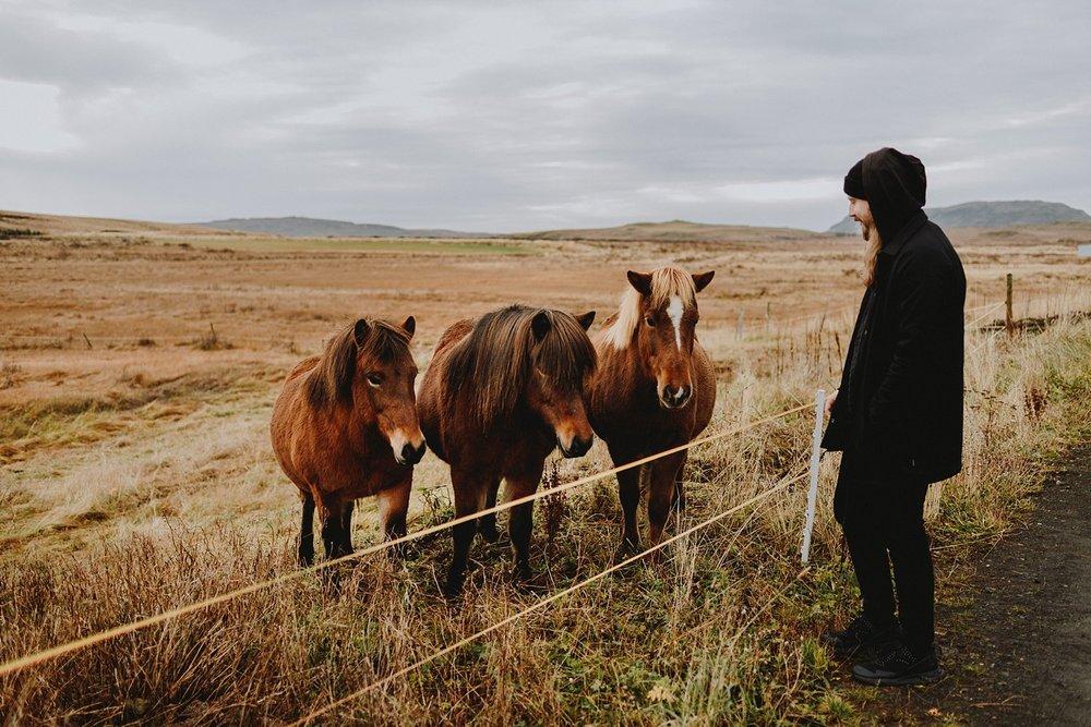 CarolinaSegrePhotography_Iceland_0005.jpg