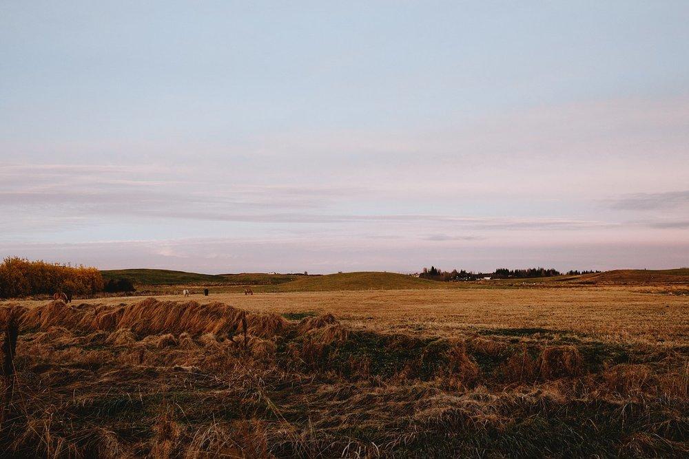 CarolinaSegrePhotography_Iceland_0055.jpg