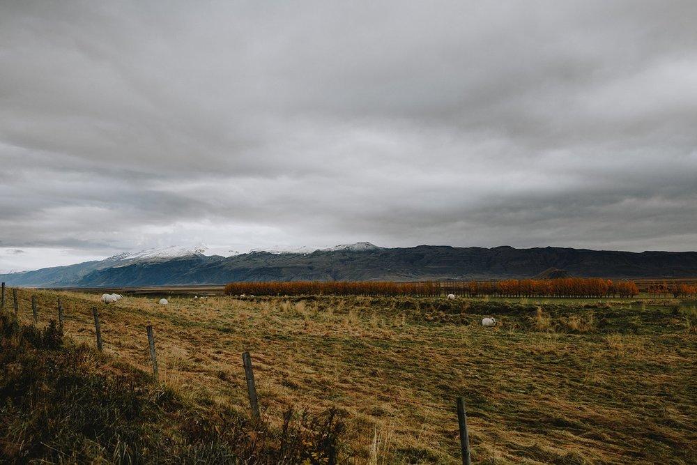 CarolinaSegrePhotography_Iceland_0062.jpg