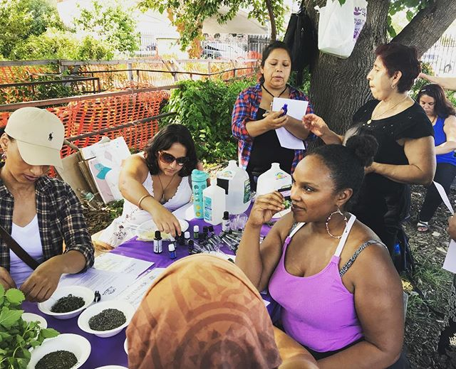 Medicine making with #lavender #eucalyptus #peppermint #essentialoils #witchhazel #rosewater  #pocherbalists #herbalmedicine #plantmedicine #bronx