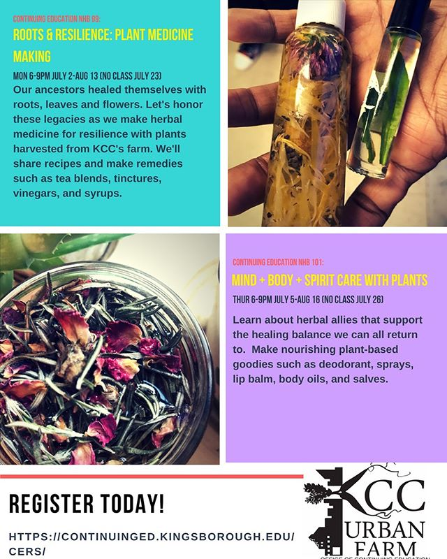 One of our peoples is offering two plant medicine making classes at @kccurbanfarm starting July 2! Check it out and sign up at https://continuinged.kingsborough.edu/cers/
