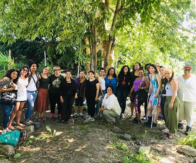 Looking back at one of the free medicine making workshops we hosted at @lafincadelsur this past June led by @jloandbehold @huracanclaudia and supported by Nancy Surún Ortiz. What an honor to heal/make medicine in community & hear stories from garden members and founders 💕 #nycgardens #bronx #healing spaces #communityhealing #healingjustice #sanacioncomunitaria #huertocomunitario
