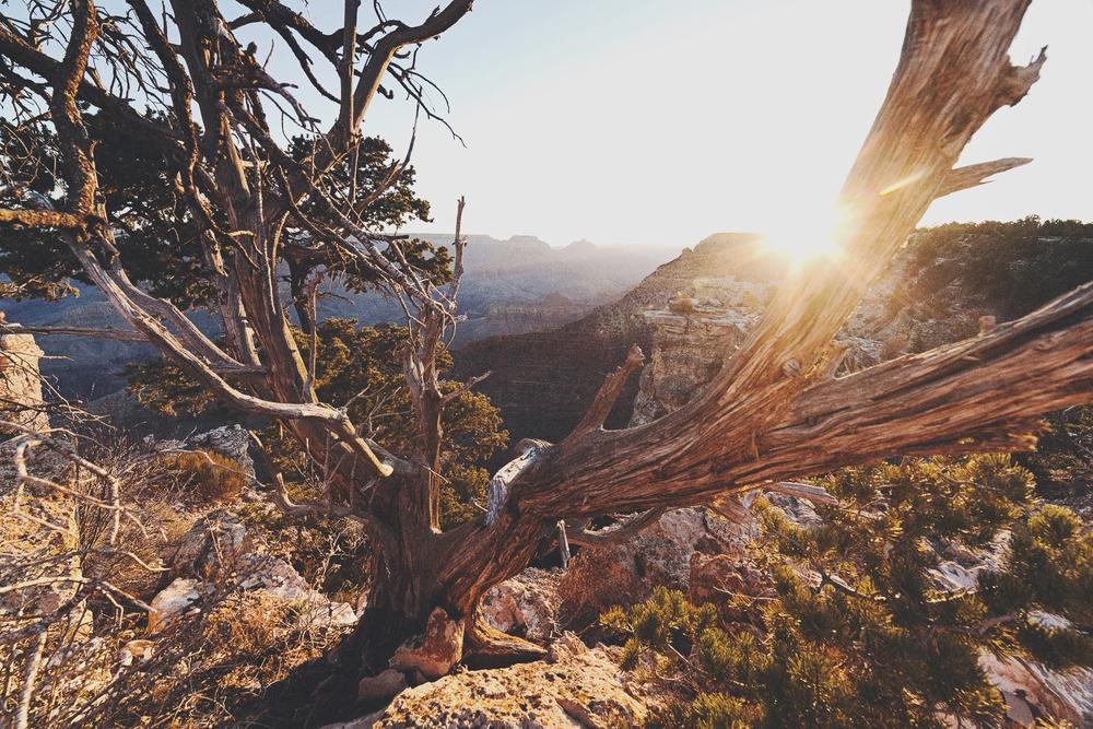 003©outlivecreative.blogimages.jpg