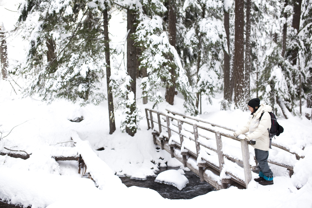 Outlive+Creative+Winter+Wonderland_0008.jpg