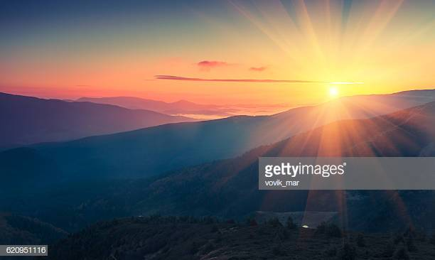 Photo by vovik_mar/iStock / Getty Images