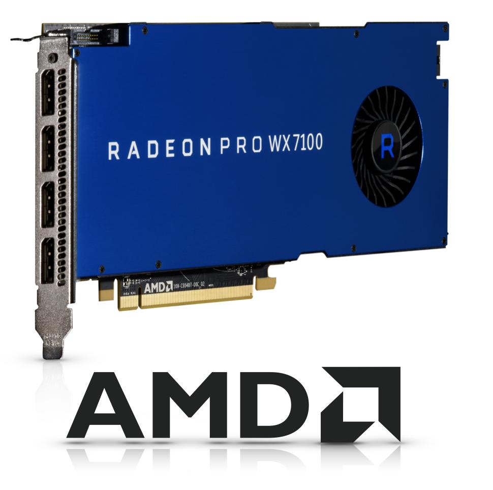 AMD for Website02.png