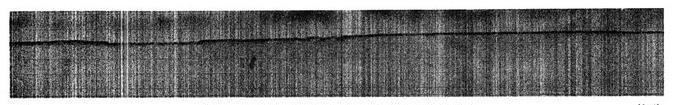 steidle_03.jpg