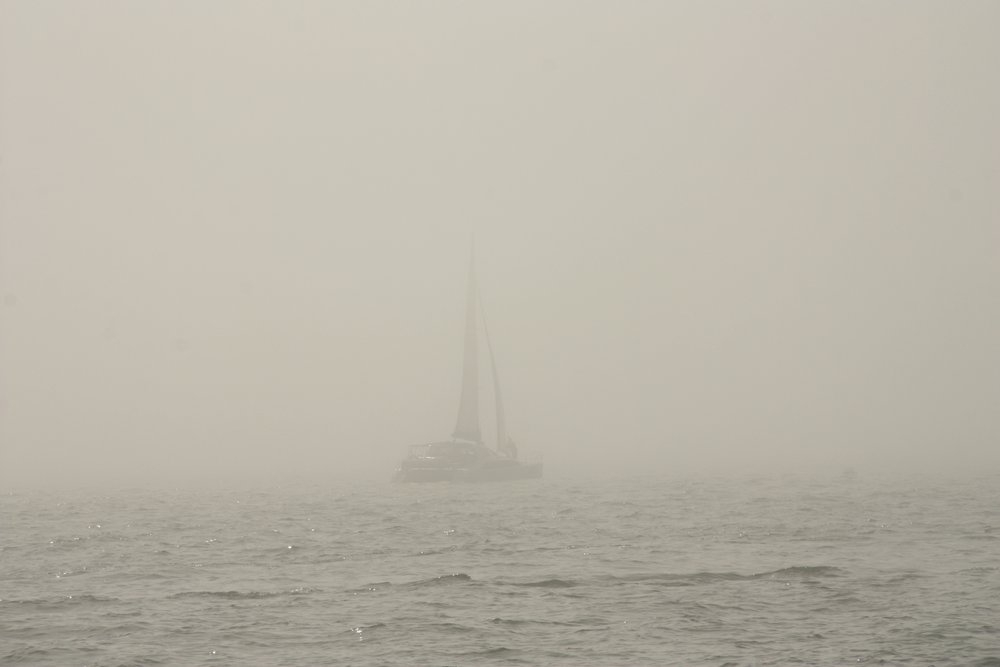 A Photo taken out of focus is not the same as a photo taken crisply in a bank of fog. (Photo credit: Jan Irons)