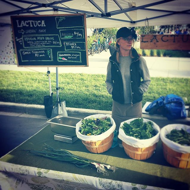 @vickymberg, aka Farm Boss @lactucafarmyeg bossing @124grandmarket. Catch all our good eats thurs from 4 to 8pm.