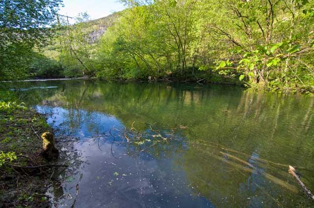 Bruelva har mange utfordringer. Flere steder ligger trær i elva, til glede for fisk og til frustrasjon for fiskere. Men skjulestedene er viktige i en liten elv som denne. Selv der vi har fjerner rikelig for i det hele tatt å kunne slippe til med ei fiskestang danner den gjenværende skogen flere steder et tak over elveløpet. Det gir en spesiell fin og intim stemning.