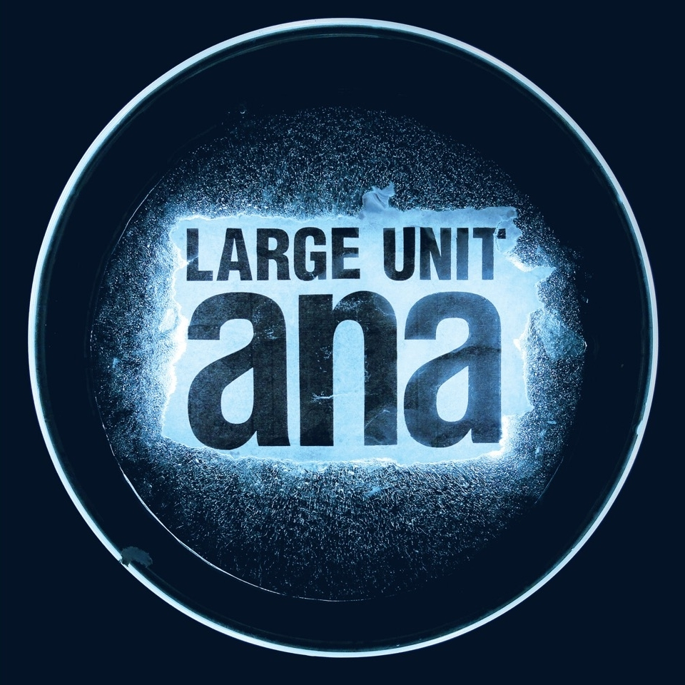 LARGE UNIT - ana (2016)
