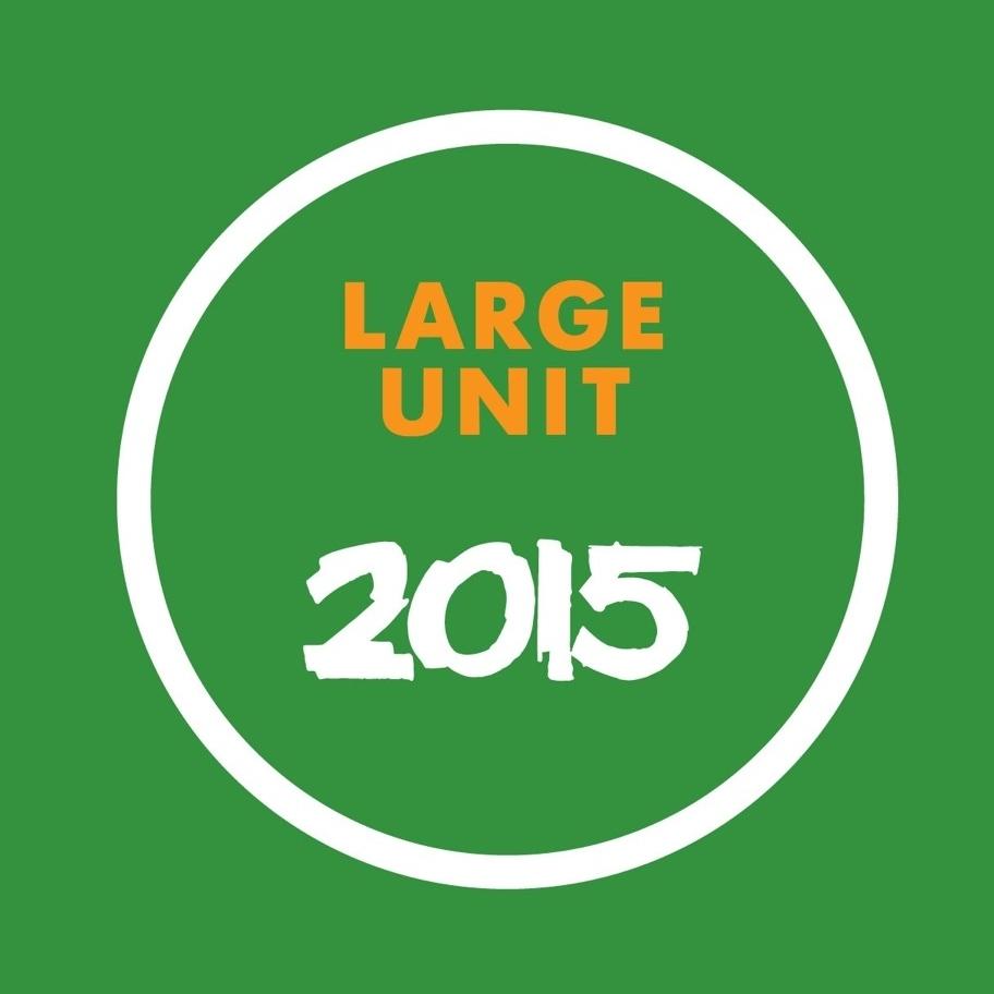 LARGE UNIT - 2015 (2015)