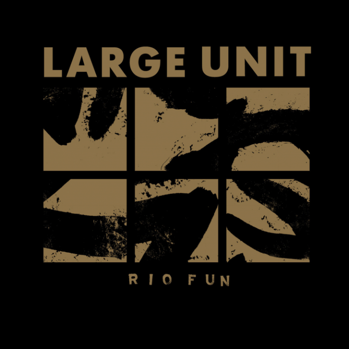 LARGE UNIT - Rio Fun (2015)