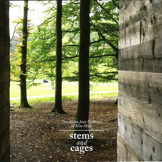 TRONDHEIM JAZZ ORCHESTRA & KIM MYHR ‎– Stems And Cages