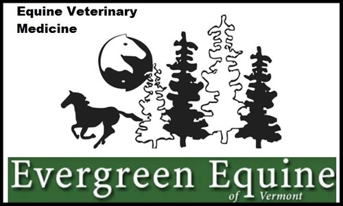 Evergreen Equine VT  5000 Route 44 Reading, VT, 05062 w:  www.evergreenequinevt.com  p: (802) 484-9100 e:office@evergreenequinevt.com