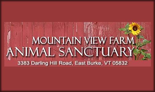 Mountain View Farm Animal Sanctuary   PO Box 38  East Burke, VT 05832 p: (802) 745-9508  w: www.mvfas.org   e: mtviewanimalsanctuary@gmail.com