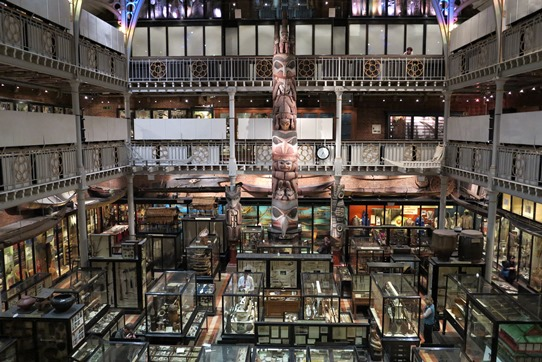 Pitt Rivers Museum, Oxford. Image by Tony Wheeler
