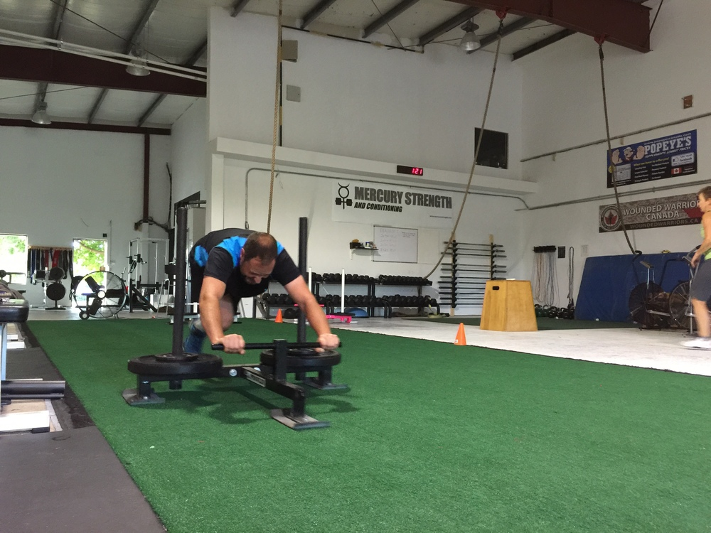 gym-fitness-training-kingston-Andrew prowler