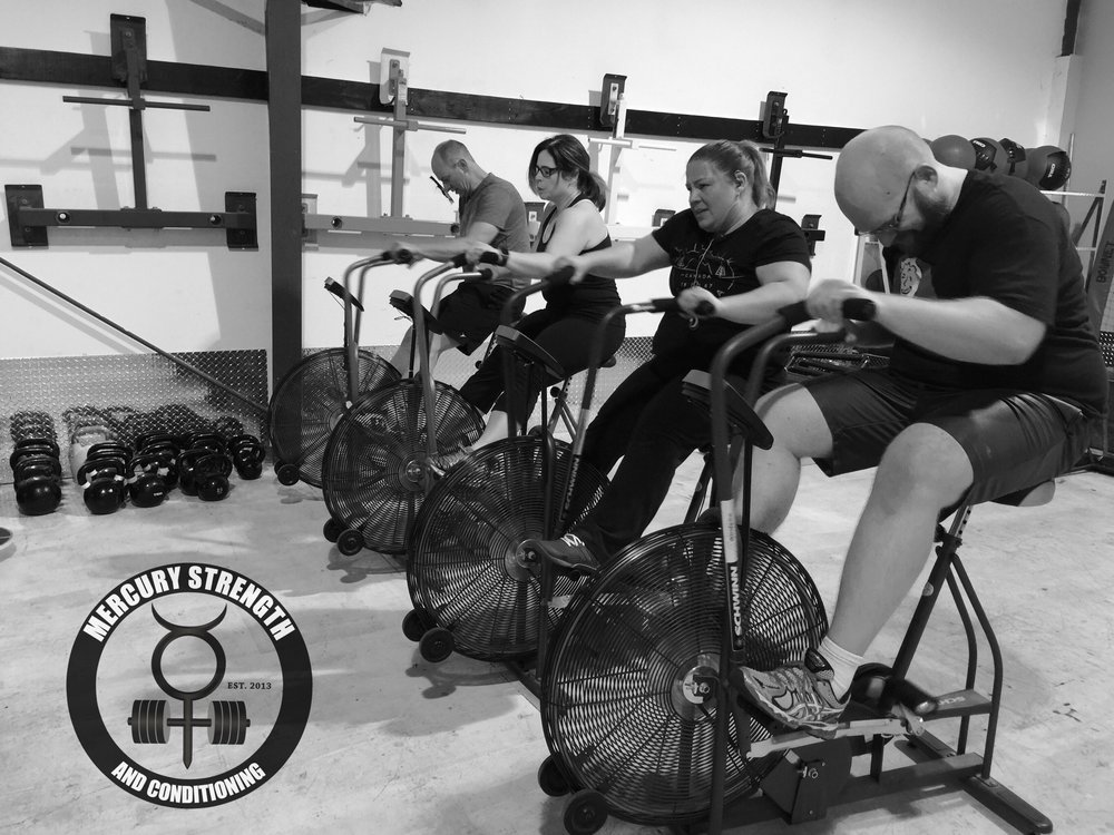 Jamie, Lori, Jan, and Rob with some fretless air dyne action last night