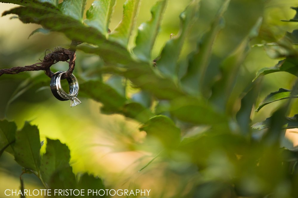 Charlotte Fristoe Photography Wakulla Wedding-1.jpg