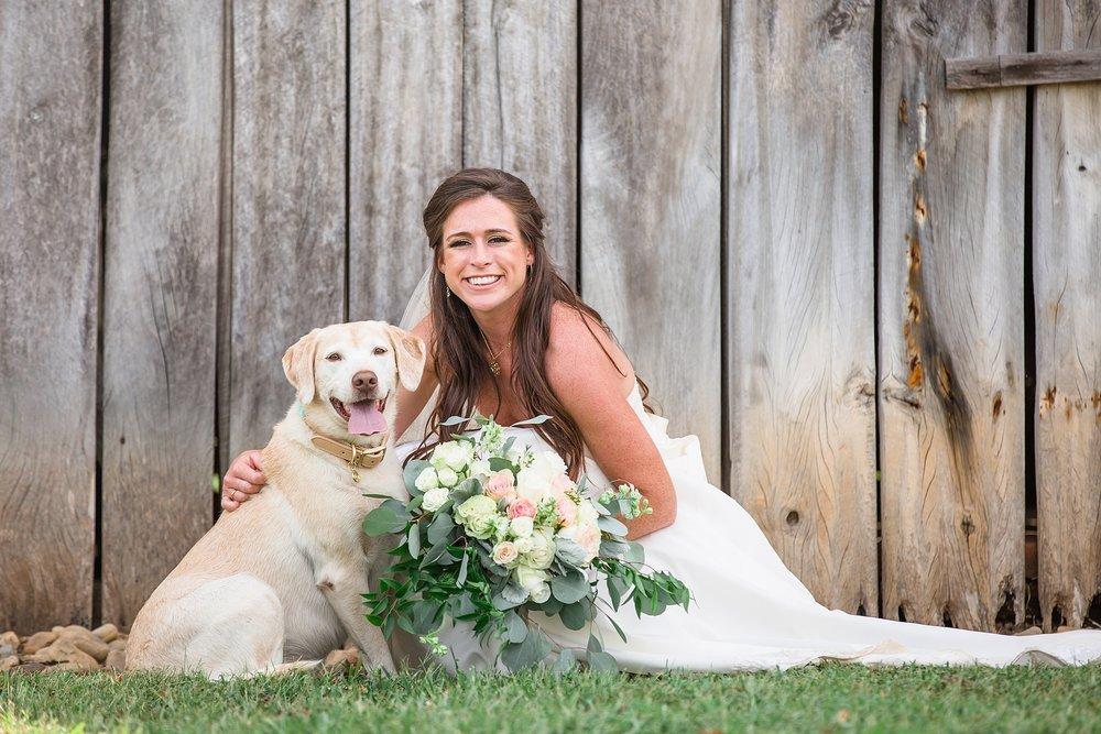 Dogs at wedding.jpg