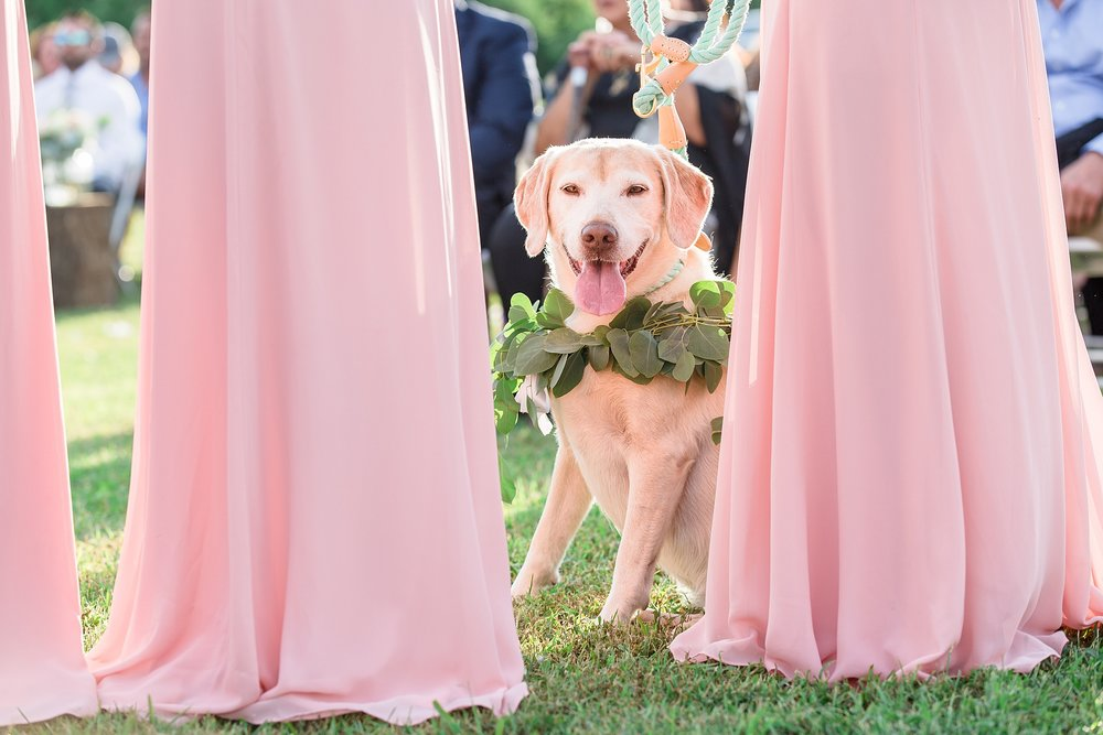 Tennessee Wedding Photographer-31.jpg