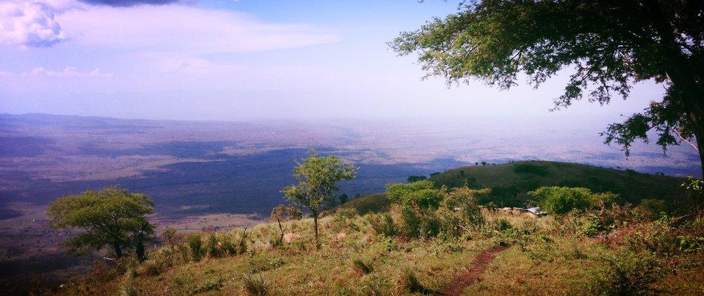 Running the Rift Marathon Half Marathon