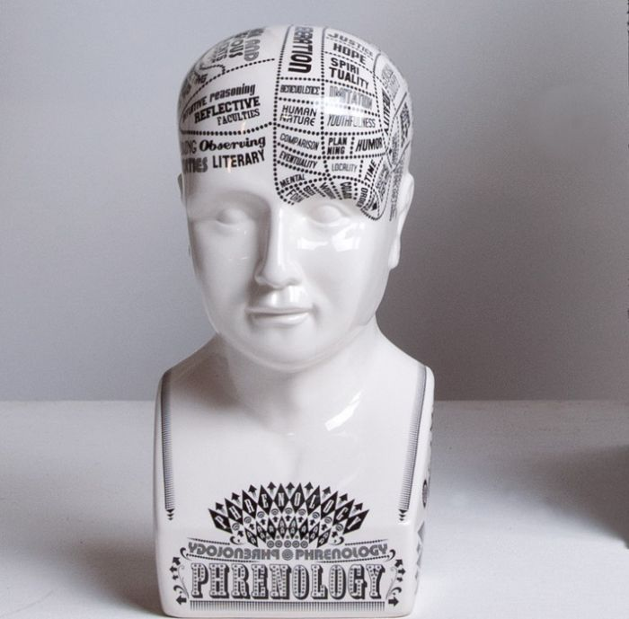 Hand printed Phrenology head by Petrantoni for Seletti