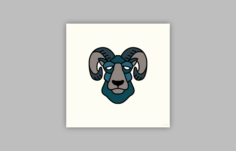 BIGHORN SHEEP  ( Ovis canadensis )