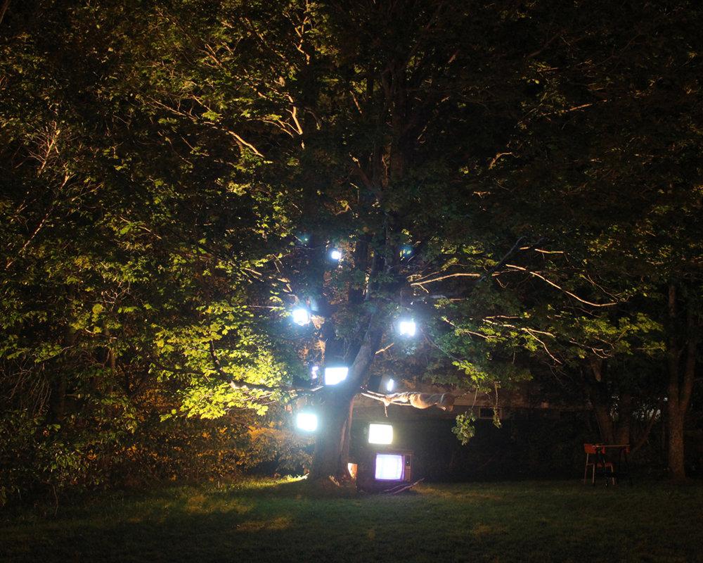 Last Days of Snow: Nightlights Like Fireflies_2700, 16 x 20 Archival C-print on chromira paper 2011-2014, 175.00 CAD