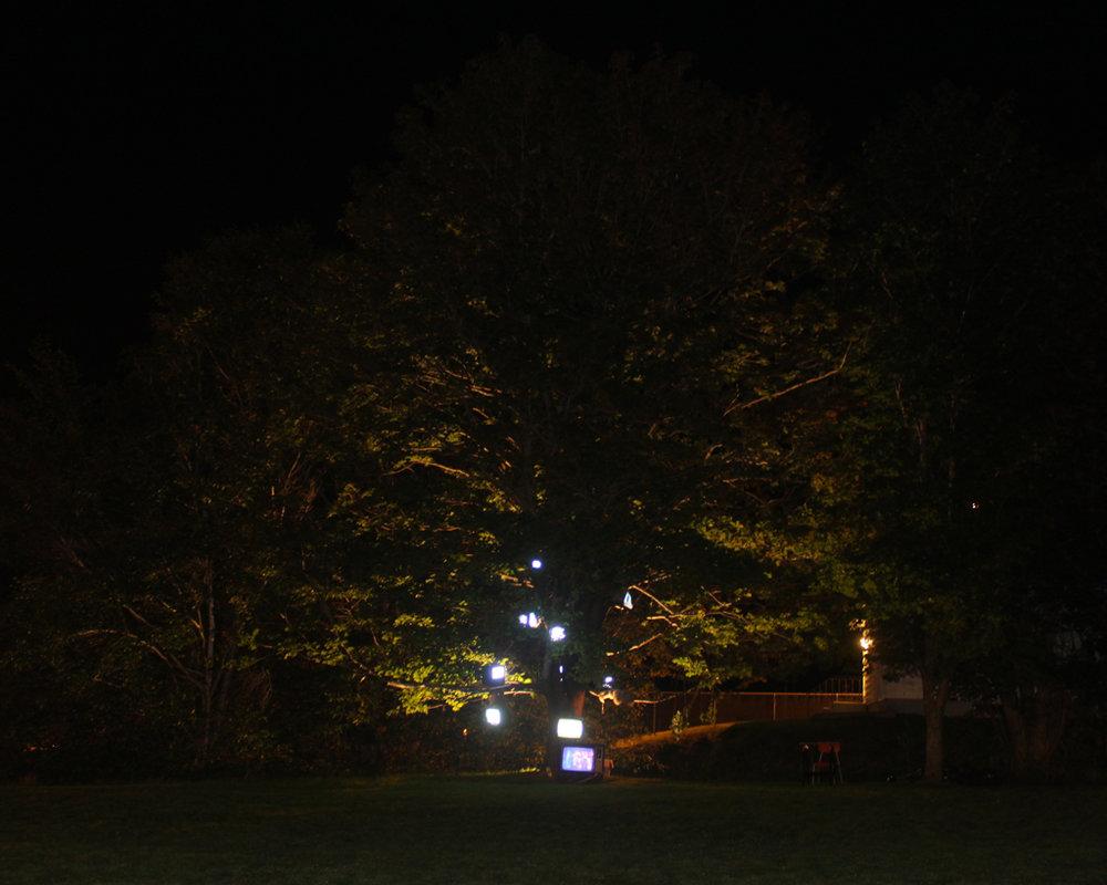 Nightlights_02_2695.jpg