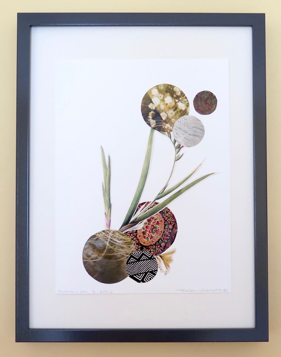 "Botanical 3, 2016, hand cut paper, vintage botan-ical print, glue, on paper, 12"" x 9"", framed: 17 x 13 inches, 250 CAD"